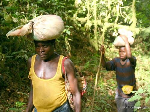 Ásványokat felvásárló és feldolgozó cég alapítása Bukavu-ban